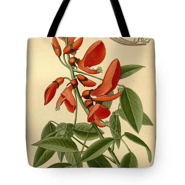 Coral Tree Tote Bag by Philip Ralley