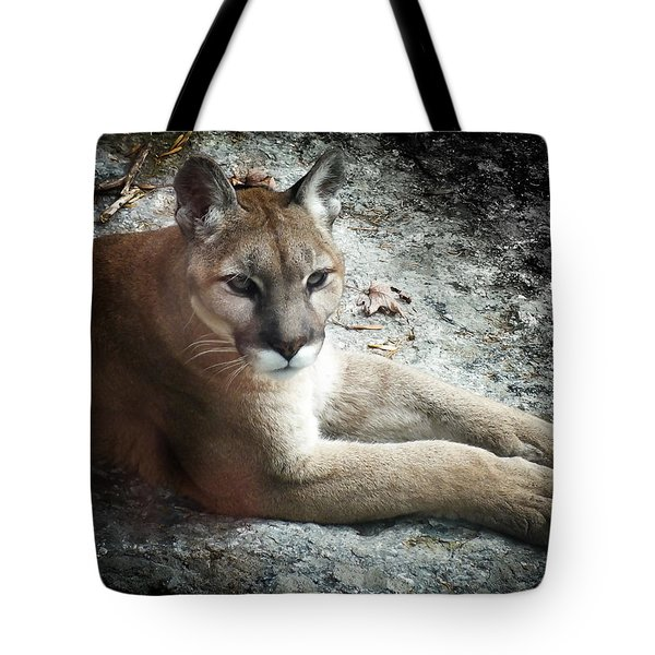 Cougar Country Tote Bag by Karen Wiles
