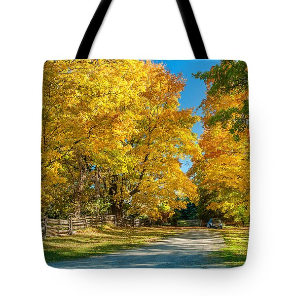 Country Lane Tote Bag by Steve Harrington