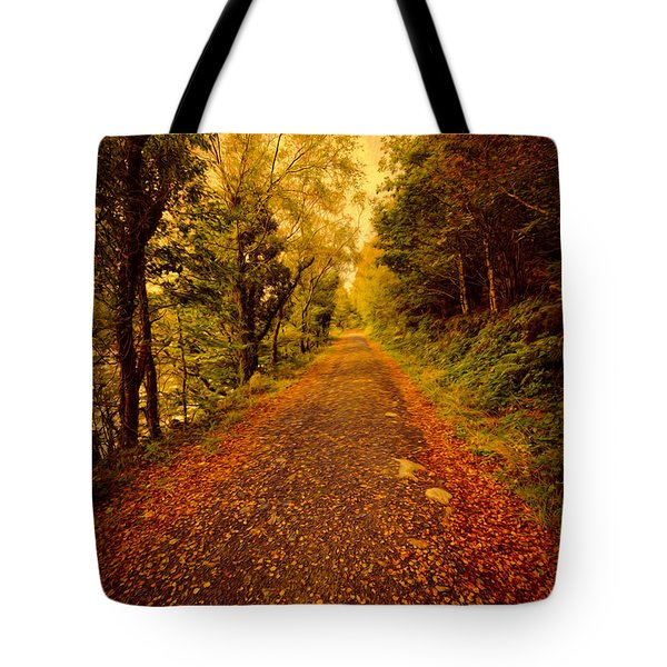 Country Lane V2 Tote Bag by Adrian Evans