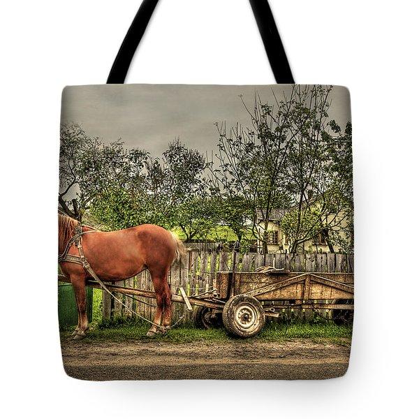Country Life Tote Bag by Evelina Kremsdorf