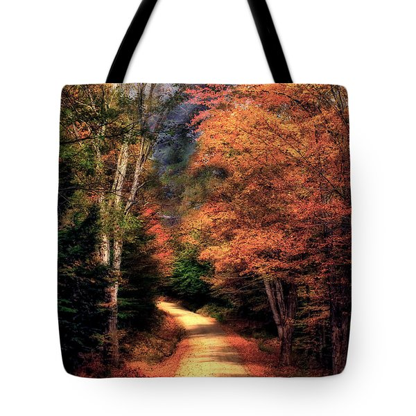 Country Road Tote Bag by Brenda Giasson