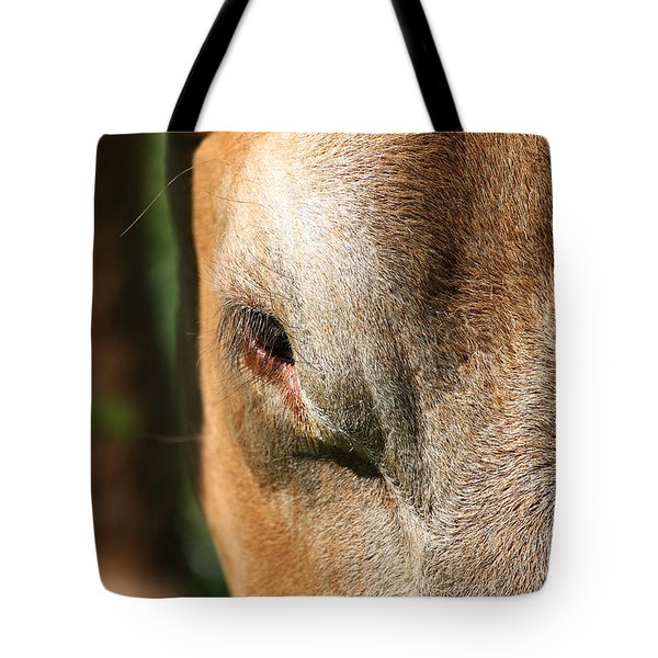 Cow Closeup 7D22397 Tote Bag by Wingsdomain Art and Photography
