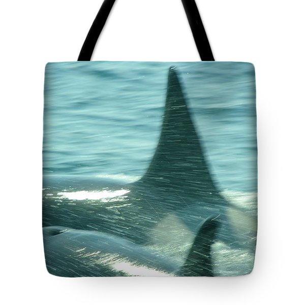Cow Orca And Her Calf Tote Bag by Jeff Swan