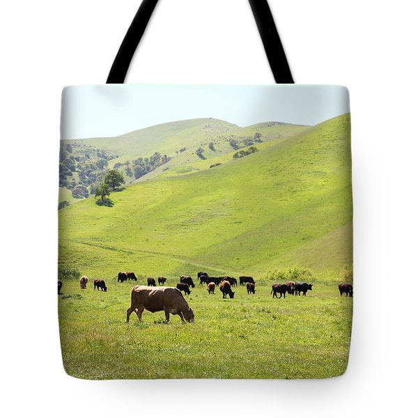 Cows Along The Rolling Hills Landscape of The Black Diamond Mines in Antioch California 5D22328 Tote Bag by Wingsdomain Art and Photography