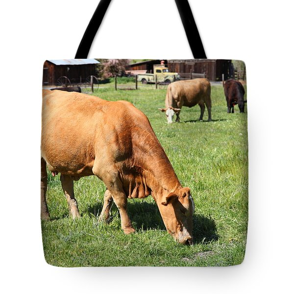 Cows Home On The Ranch At The Black Diamond Mines in Antioch California 5D22358 Tote Bag by Wingsdomain Art and Photography