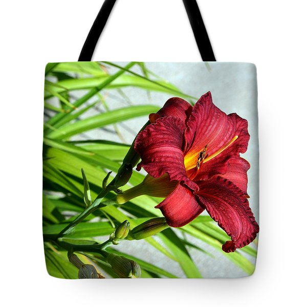 Cranberry Colored Lily Tote Bag by Kay Novy
