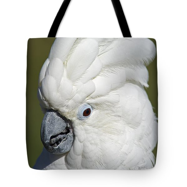 Crazy As Crackers... Tote Bag by Nina Stavlund