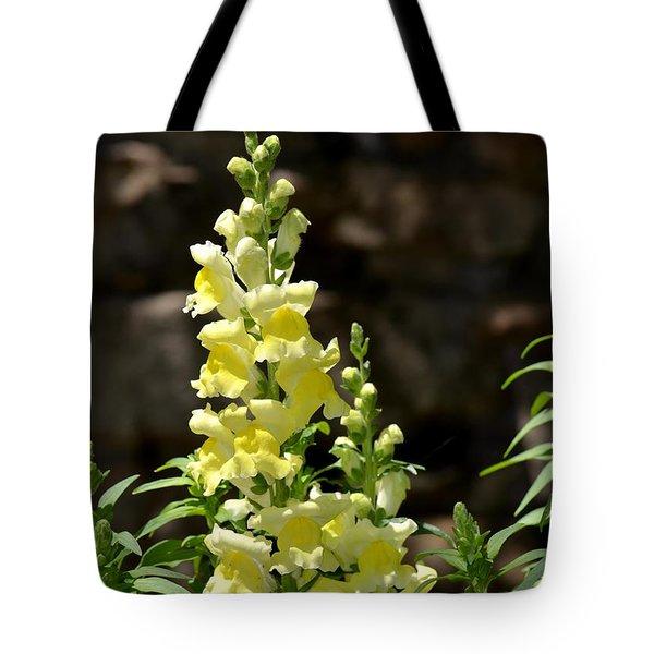 Creamy Yellow Snapdragon Tote Bag by Maria Urso