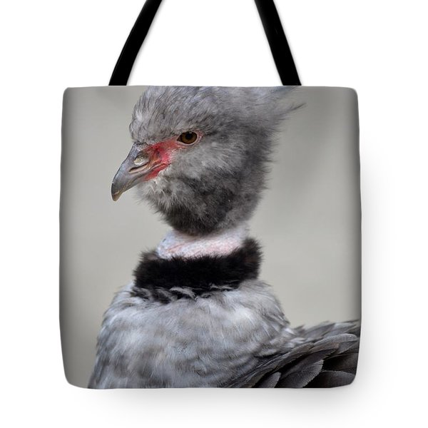 Crested Screamer Tote Bag by Richard Bryce and Family