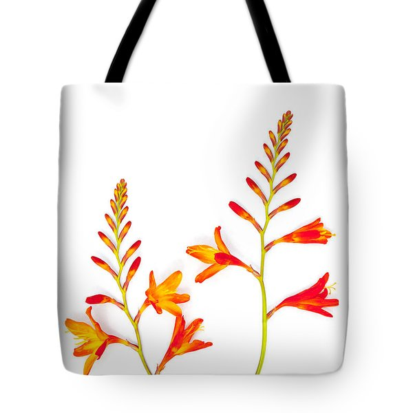 Crocosmia On White Tote Bag by Carol Leigh