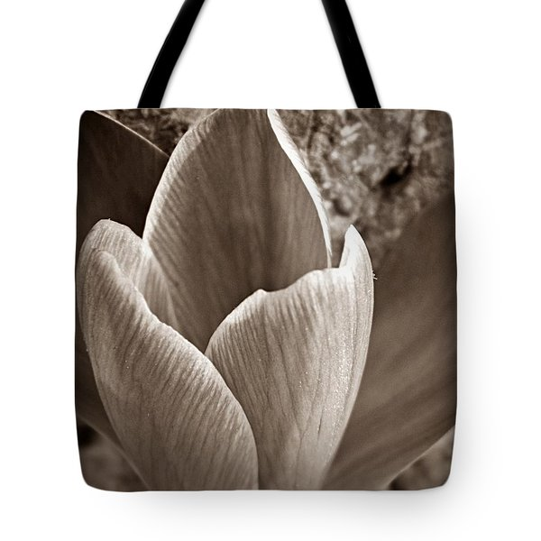 Crocus Tote Bag by Chris Berry
