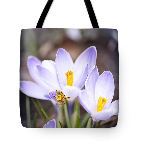 Crocus Flowers And Bee Tote Bag by Elena Elisseeva