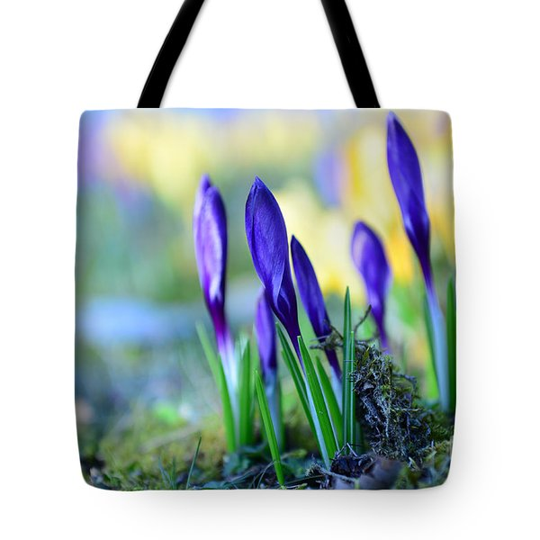 Crocus Tote Bag by Hannes Cmarits