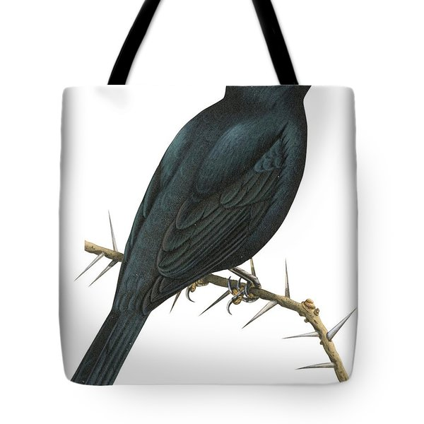 Cuckoo Shrike Tote Bag by Anonymous