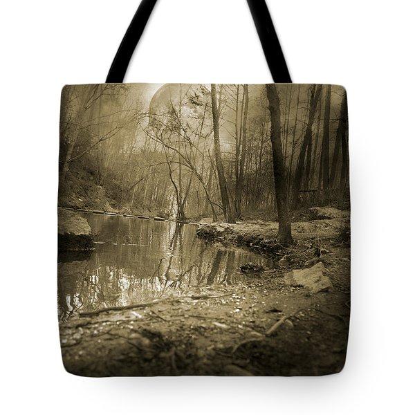 Culmination Tote Bag by Betsy C  Knapp