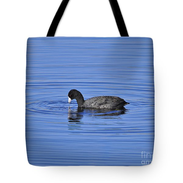Cute Coot Tote Bag by Al Powell Photography USA