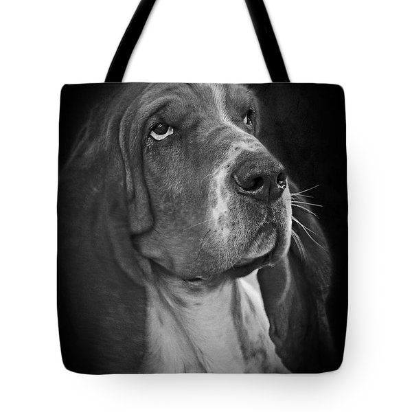 Cute Overload - The Basset Hound Tote Bag by Christine Till