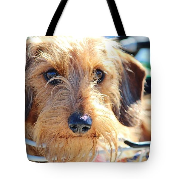Cute Puppy Tote Bag by Cynthia Guinn