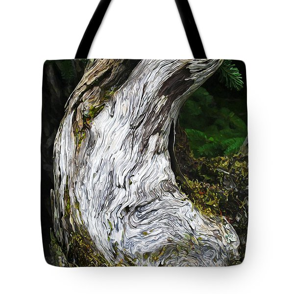 Cycle of Life Tote Bag by Bill Caldwell -        ABeautifulSky Photography