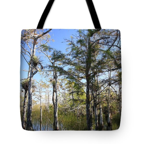 Cypress Swamp Tote Bag by Rudy Umans