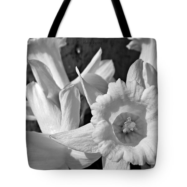 Daffodil Monochrome Study Tote Bag by Chris Berry