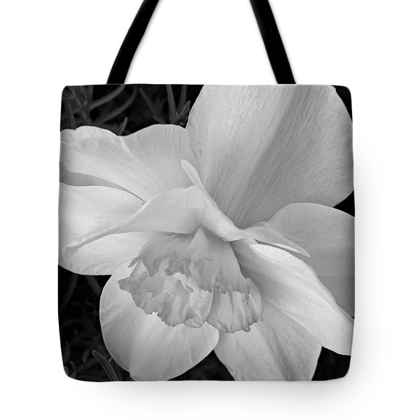 Daffodil Study Tote Bag by Chris Berry