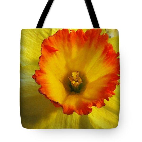 Daffodil Sunset Tote Bag by Shawna Rowe