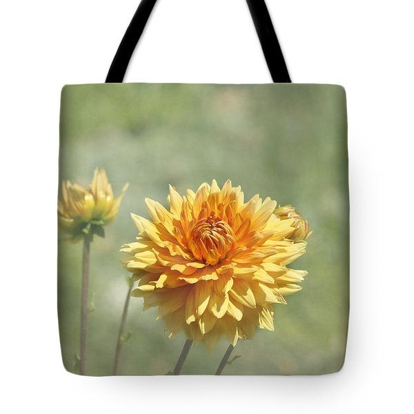 Dahlia Flowers Tote Bag by Kim Hojnacki