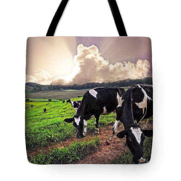 Dairy Cows At Sunset Tote Bag by Debra and Dave Vanderlaan