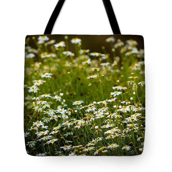 Daisy Sunrise Tote Bag by Sebastian Musial