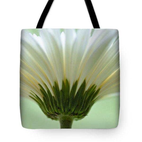 Daisy Sweetness Tote Bag by Christi Kraft