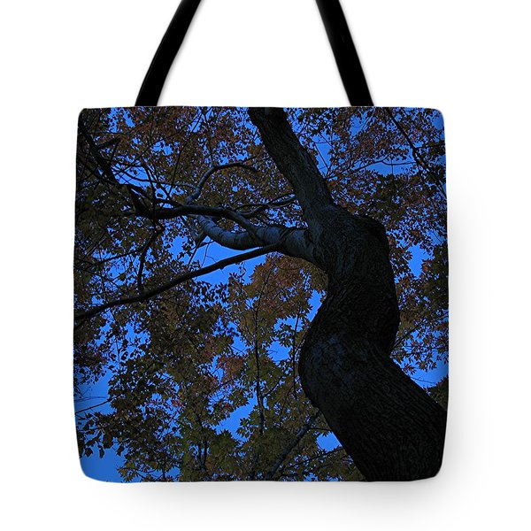 Dancing Tote Bag by Juergen Roth