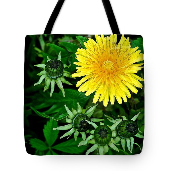 Dandelion Farm Tote Bag by Frozen in Time Fine Art Photography