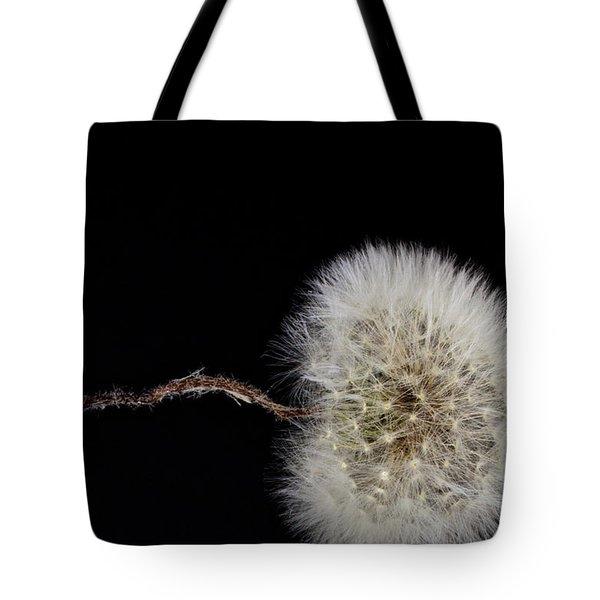 Dandelion Parachute Ball Tote Bag by Bob Orsillo