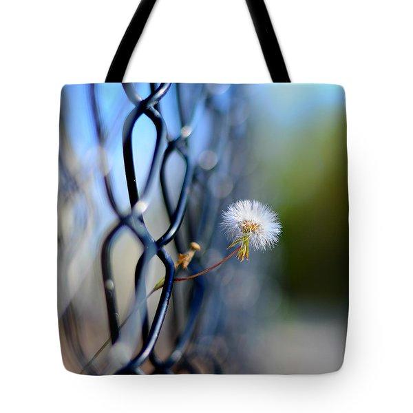 dandelion wish Tote Bag by Laura  Fasulo