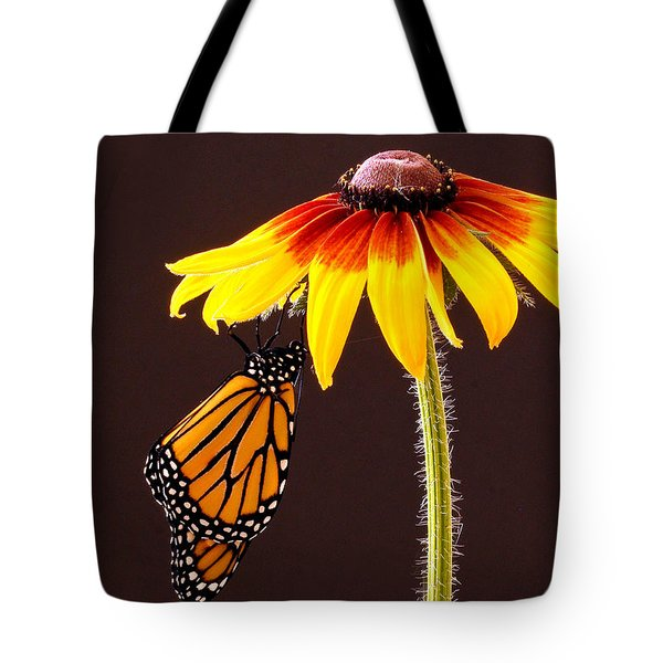 Dangling Monarch Tote Bag by Jean Noren
