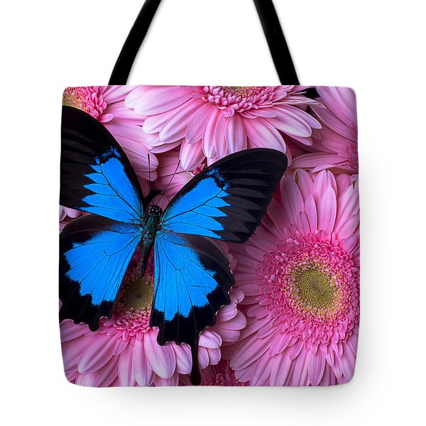 Dark Blue Butterfly Tote Bag by Garry Gay