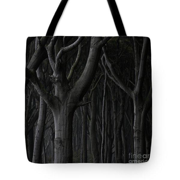 Dark Forest Tote Bag by Heiko Koehrer-Wagner