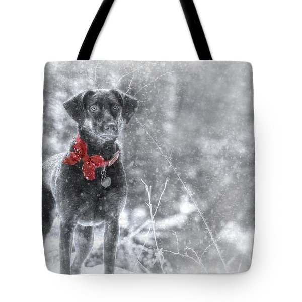 Dashing Through the Snow Tote Bag by Lori Deiter