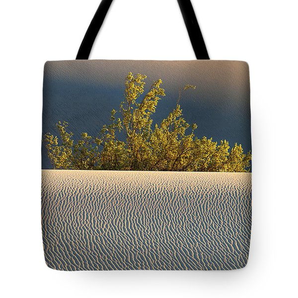 Dawn Mesquite  Tote Bag by Joe Schofield