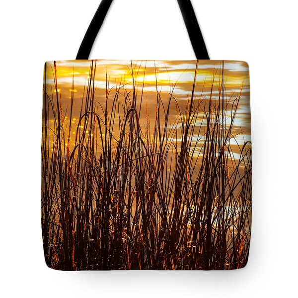 DAWN'S EARLY LIGHT Tote Bag by KAREN WILES