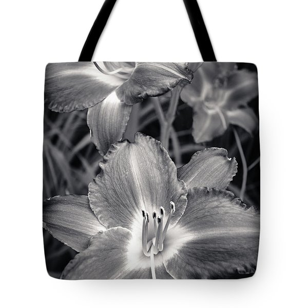 Day Lilies in Black and White Tote Bag by Adam Romanowicz