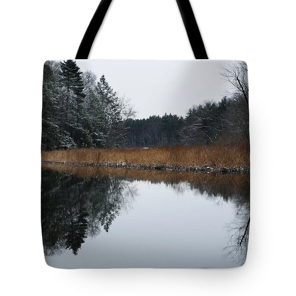 December Landscape Tote Bag by Luke Moore