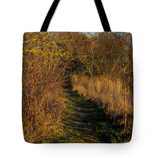december light - Leif Sohlman Tote Bag by Leif Sohlman