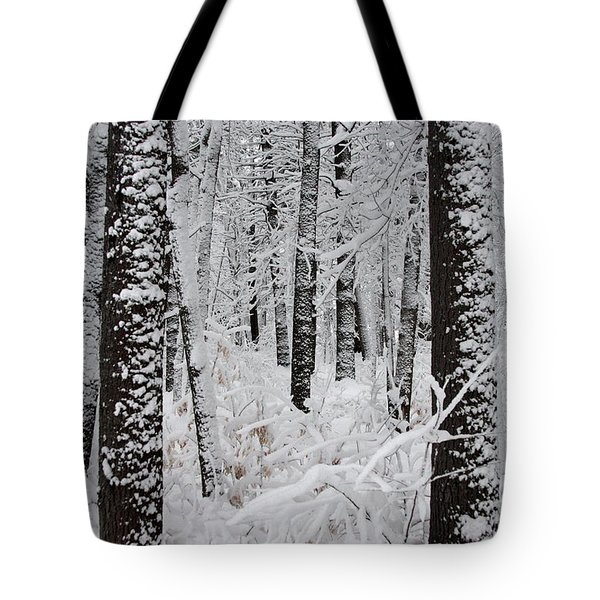 Deep Snow In The Forest Tote Bag by Lynn-Marie Gildersleeve