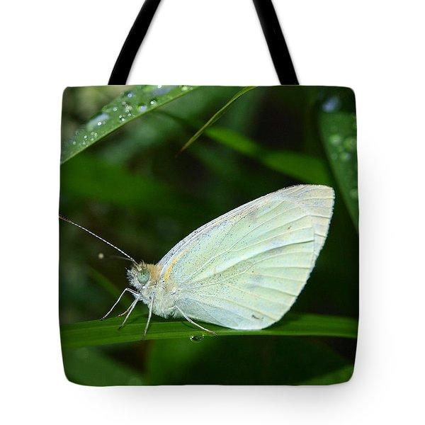Delicate Tote Bag by Tom Druin