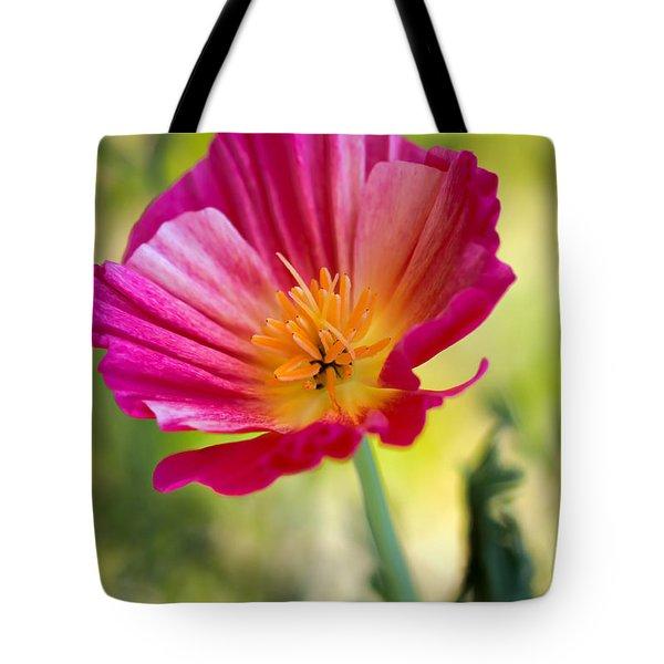 Delightful Tote Bag by Heidi Smith