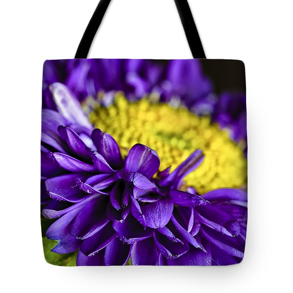 Delights the Eye Tote Bag by Christi Kraft