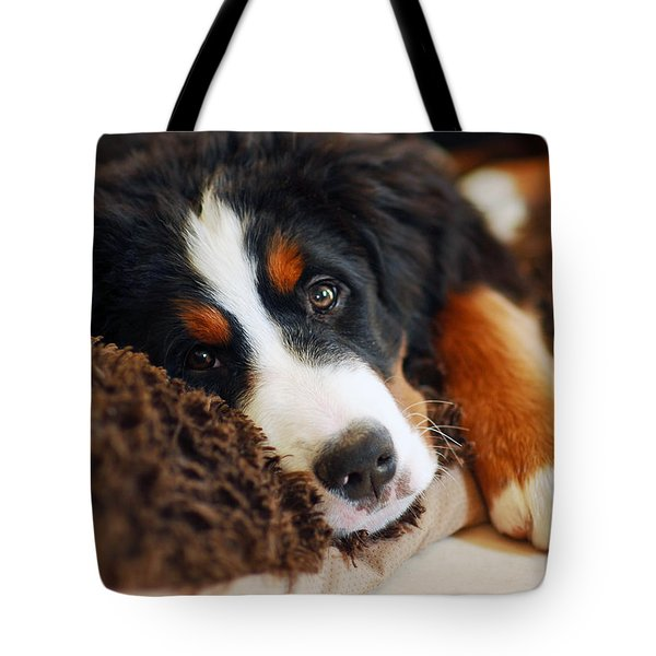 Delilah Tote Bag by Lisa Phillips